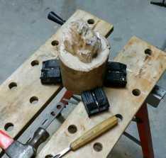 Wood carving green eucalypt (bear in progress!)